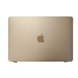 substituição de tela macbook a1534 Ponte Rasa